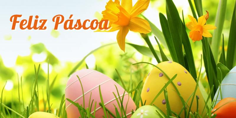 Páscoa: a esperança da vida, buffet infantil, festa infantil, festa bh, aniversários, festa na floresta, salão de festas