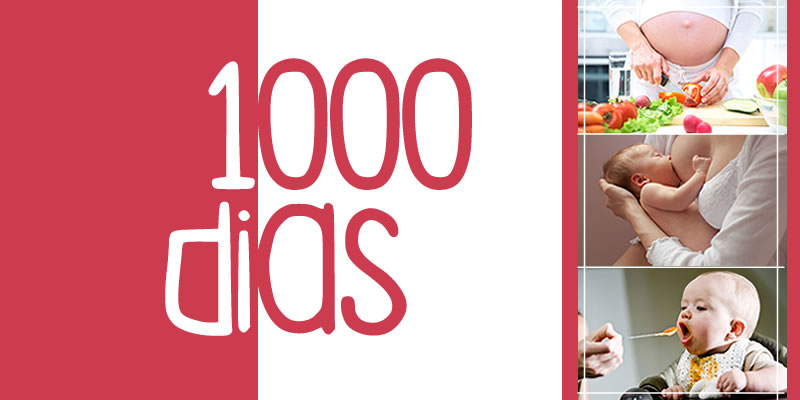 1000 Dias, amamentação, nutrição, introdução alimentar, gestação, gravidez, festa na floresta, buffet infantil, salão de festas, festa infantil,